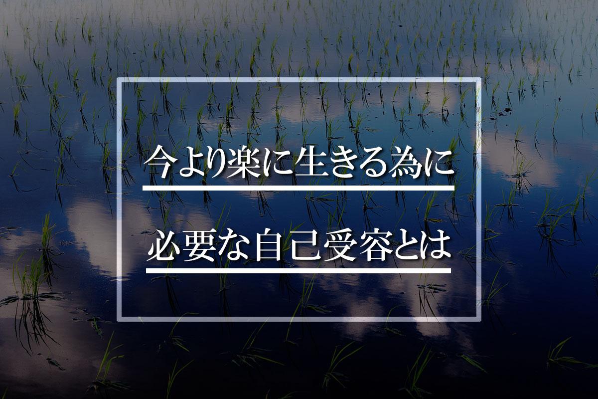 田んぼの写真